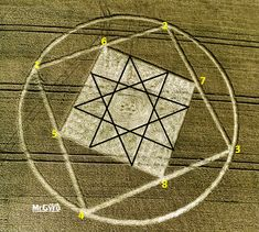 "Crop Circle ""The double Octagram or a 16 pointed star symbolized eternal power in Ancient Mesopotamia.At Etchilhampton, nr Devizes, Wiltshire, United Kingdom. Reported 3rd August 2015"