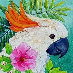 Cockatoo w/Hibiscus by Tim Marsh Parrot Painting, Flamingo Painting, Painted Bricks Crafts, Painted Rocks, Bird Drawings, Kawaii Drawings, Hummingbird Pictures, Watercolor Beginner, Australia Animals