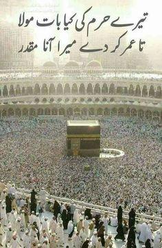 ameen plz Allah G plz Quran Quotes Inspirational, Islamic Love Quotes, Muslim Quotes, Urdu Quotes, Quotes Images, Islamic Phrases, Islamic Messages, Islamic Status, Quran Arabic