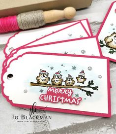 Christmas Bird, Christmas Minis, Christmas Gift Tags, Winter Christmas, Xmas, 3d Paper, Paper Crafts, Card Crafts, Stampin Up