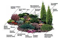 Easy Diy Garden Projects You'll Love Privacy Landscaping, Hillside Landscaping, Modern Landscaping, Front Yard Landscaping, Small Garden Landscape, Alpine Garden, Backyard Plan, Contemporary Garden, Diy Garden Projects
