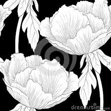 Draw Flower Patterns Beautiful monochrome, black and white seamless background with flowers Plant Paeonia arborea (Tree peony) with stem and leaves. Hand-drawn contour lines and strokes. Peony Drawing, Contour Line Drawing, Flower Drawing Images, Drawing Ideas, Monochrome, Kawaii Doodles, Floral Sleeve, Seamless Background, Drawing Techniques
