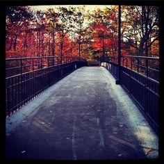 Little Mac Bridge by James Freybler #gvsu #GVFall