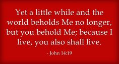 John 14:19 Yet a little while and the world beholds Me no longer, but you behold Me; because I live, you also shall live. #Bible #ScriptureVerse Recovery Version, quoted at www.agodman.com