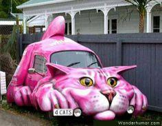 kitty cat car