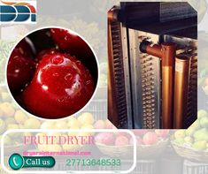Another extraordinary thing about a #fruit_dryer is that you can make your own snacks with as meagre or as much salt and sugar as you'd like and you know precisely what is in your food. Fruit Dryer, Colorful Fruit, Dehydrated Food, Dehydrator Recipes, Best Fruits, Preserving Food, Fruits And Vegetables, Chutney, Pomegranate