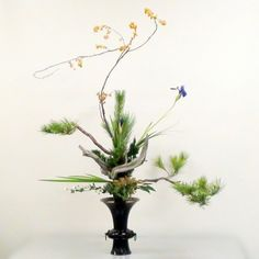 japanese flower arrangements | Ikenobo Ikebana Japanese flower art by Junko