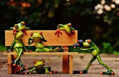 Frogs, Photographer, Sociable, Bank