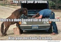 Pony mechanic