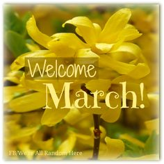 ¡ Welcome March! Spring Months, Days And Months, Months In A Year, 12 Months, Happy March, Hello March, March Month, March Born, Timeline Photos