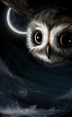 Flying Owl~reminds me of the book Legends of the Guardians that Julia loved.