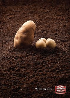 The Print Ad titled Calgary Farmers Market: Potatoes was done by Wax advertising agency for Calgary Farmers Market in Canada. Calgary, Potato Print, Cute Potato, Cute Food, Print Ads, Farmers Market, In This World, Wax, Potatoes
