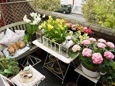 Auch auf dem Balkon kann ein echtes Blumenmeer entstehen. Denn ist der Platz auch noch so klein: Mit der richtigen Auswahl an Blumen und einer liebevollen Aufzucht der kleinen Pflänzchen wird auch Ihr Balkon zu einer blumigen Wohlfühloase. Chicano, Scandinavian Design, Garden Landscaping, Outdoor Living, Table Decorations, Inspiration, Landscape, Green, Flowers