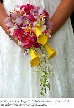 Yellow Calli, Orchids and Plumeria @ Alyssa Arnoldus