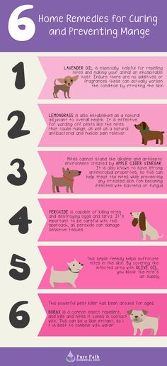 how effective is the borax cure for mange
