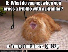 Tribble maker.