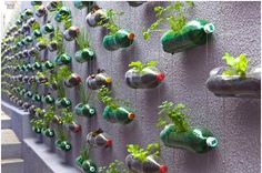 Made with soda bottles
