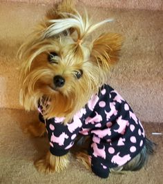 Dog Pajamas in black soft flannel with pink puppy print . These PJ's are perfect for cold nights or days in the house with the air conditioning. Your pet will enjoy wearing these soft and snugly PJ'S