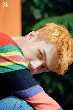 Sehun - The War_Kokobop - EXO Album