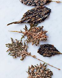 These dead-simple kale chips from F&W's Kay Chun are irresistibly crispy and require just 15 minutes of prep.   Slideshow: Best Chip and Dip Recipes