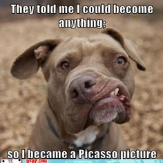 I DO NOT FIND THIS FUNNY AT ALL, ESPECIALLY AFTER TAKING IN SPECIAL NEEDS RESCUE ANIMALS, WHOM NEED SERIOUS VETTING TO FIX SINCERELY SAD DISABILITIES THEY CANNOT HELP, & OFTEN VETERINARIANS CANNOT FIX. ANY HUMAN WHO WOULD CREATE A STUPID GRAPHIC LIKE THIS OF THEIR OWN FAMILY MEMBER, IS FAR FROM FUNNY & DOWN RIGHT CRUEL.  SOCIETY HAS BECOME SO SICK !  Dog Meme | Funny Dog Memes