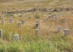 Little Big Horn Battlefield National Monument - Crow Agency - Montana (july Us History, American History, Battle Of Little Bighorn, George Armstrong, Crime, Native American Ancestry, California Destinations, Places In America, Big Sky Country