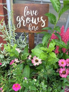 """love grows here"" wooden garden sign"