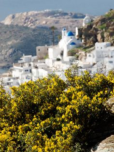 Easter Holidays in Ios island   My Country