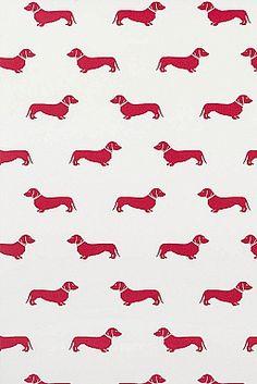 Red Dachshund Wallpaper | Emily Bond