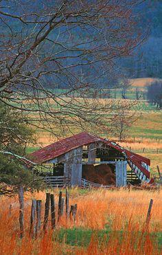 Forgotten Barn                                                                                                                                                                                 More