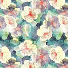 "floral : kociara - ""nasturtia"""