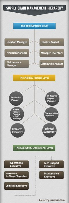 Supply Chain Management Hierarchy | Hierarchy