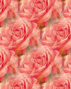 ZOOM DESIGN AND PHOTOGRAPHY: 35 funds with flowers for spring