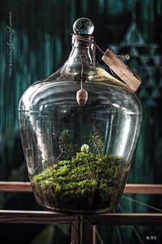 https://www.facebook.com/forestforever.art/photos/a.1502557673317426.1073741831.1502167386689788/1759462550960269/?type=3