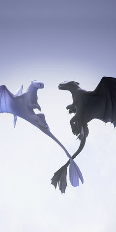 Night and light fury, love in air, dragons, flight Wallpaper Dragon Wallpaper Iphone, Toothless Wallpaper, Httyd Dragons, Cute Dragons, Croque Mou, Night Fury Dragon, Toothless Dragon, Cute Disney Drawings, Dragon Trainer