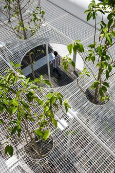 D House in Vietnam by KIENTRUC O   Yellowtrace #residentiallandscapearchitecture