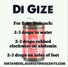 oil for nausea Helpful Ginger Essential Oil Tips For ginger essential oils benefits Helpful Ginger Essential Oil Tips For ginger essential oils benefits Digize Essential Oil Young Living, Young Essential Oils, Essential Oils Guide, Ginger Essential Oil, Essential Oils Cleaning, Essential Oil Uses, Essential Oils Upset Stomach, Essential Oils For Diarrhea, Essential Oil Combinations