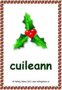 Póstaeir Nollag « Christmas Classroom Resources for Teachers Irish Language, Teacher Resources, A4, Celtic, Classroom, Seasons, Teaching, Christmas Ornaments, Holiday Decor