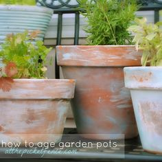#springintothedream  Top Pins That Inspired My Spring Dreams: #2 - Aged Terracotta Pots for Front Porch