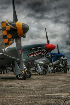 Restored P-51 Mustangs on the flight line