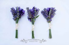 Lavender Buttonholes, Purple themed wedding, summer seasonal flowers