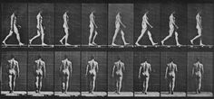 Muybridge, Eadweard: Gehender Mann, den Arm schwingend