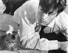Alain Delon + kitten = Swoon.