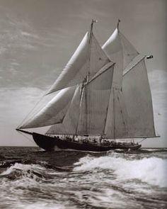 beautiful Bluenose II -- Lunenburg, Nova Scotia (largest working mainsail in the world! Canadian Symbols, Canadian History, Lunenburg Nova Scotia, Fishing Vessel, Classic Yachts, O Canada, Cape Breton, Prince Edward Island, Motor Boats