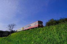 Xシリーズ写真展 作品紹介 2017春開催より Noe Arai さんの作品 FUJIFILM X-T2  FUJINON XF10-24mmF4 . いすみ鉄道菜の花列車 菜の花と青空がよく似合うローカル線です黄色い車両にはムーミンの絵が描いてあります途中の風そよぐ谷国吉駅には手作りのムーミン谷があります運行は1時間に1本位なのでドキドキしました . Xシリーズ写真展 2017春仙台で開催 6月29日(木)7月11日(火)10:0017:30 富士フイルムフォトサロン仙台 仙台市宮城野区鉄砲町西1-14 富士フイルム仙台ビル1階 TEL 022-292-0577 . Xシリーズ写真展 2017秋 作品大募集 Xユーザーの作品を超光沢クリスタルプリントで展示する写真展Xシリーズ写真展 2017秋の展示作品を募集中 . 詳しくは@fujifilmjp_x アカウントのプロフィールをご覧ください . 今後の開催日程 7月21日(金)8月3日(木) 大阪サービスステーション 8月18日(金)23日(水) 富士フイルムフォトサロン福岡 . #Xシリーズ写真展 #今日もX日和…