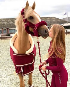 : Horses Fan on Double tap for kiss horses. Photo credit: Unknown Please DM for remove or credit Cute Horses, Pretty Horses, Horse Love, Beautiful Horses, Animals Beautiful, Animals And Pets, Baby Animals, Cute Animals, Horse Photos