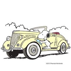 Snoopy and car