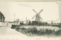 Windmill, Painting, Art, Nostalgia, Art Background, Painting Art, Kunst, Paintings, Performing Arts
