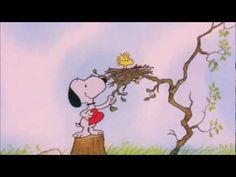 Woodstock: Character Facts, Comics, and Videos | Peanuts