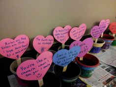 Planted pots: a community service program in which students decorated pots, planted marigold seeds, and wrote personalized notes for senior citizens living in an assisted living center.  The flower pots were delivered on Valentine's Day as a mid-winter pick-me-up!